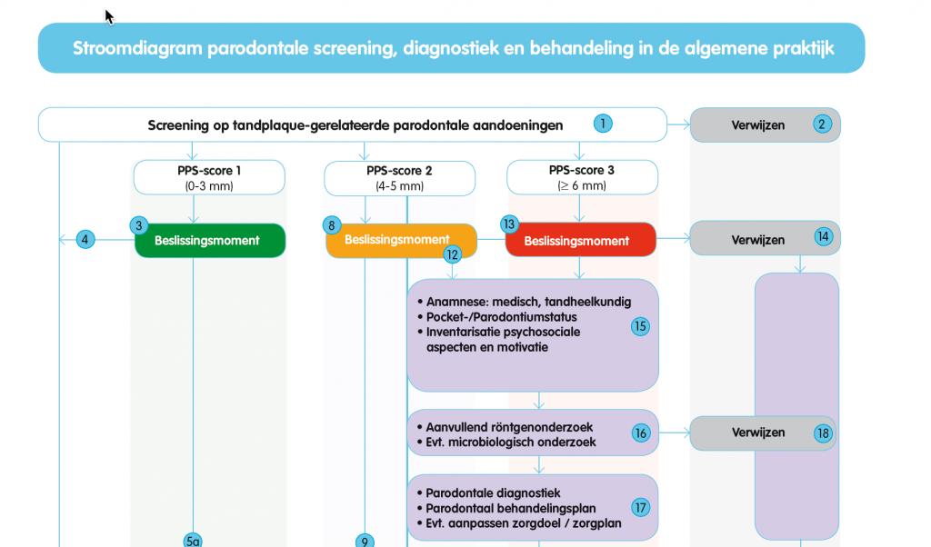 paro richtlijn, de parodontale screening, diagnostiek en behandeling in de algemene praktijk.